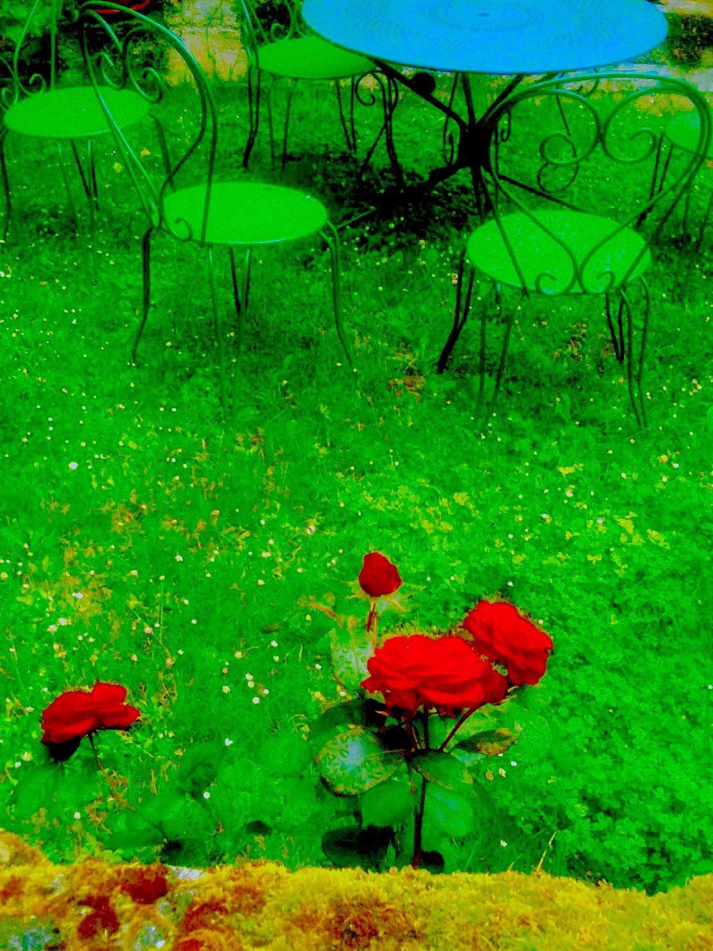 Kirlian - Roses7