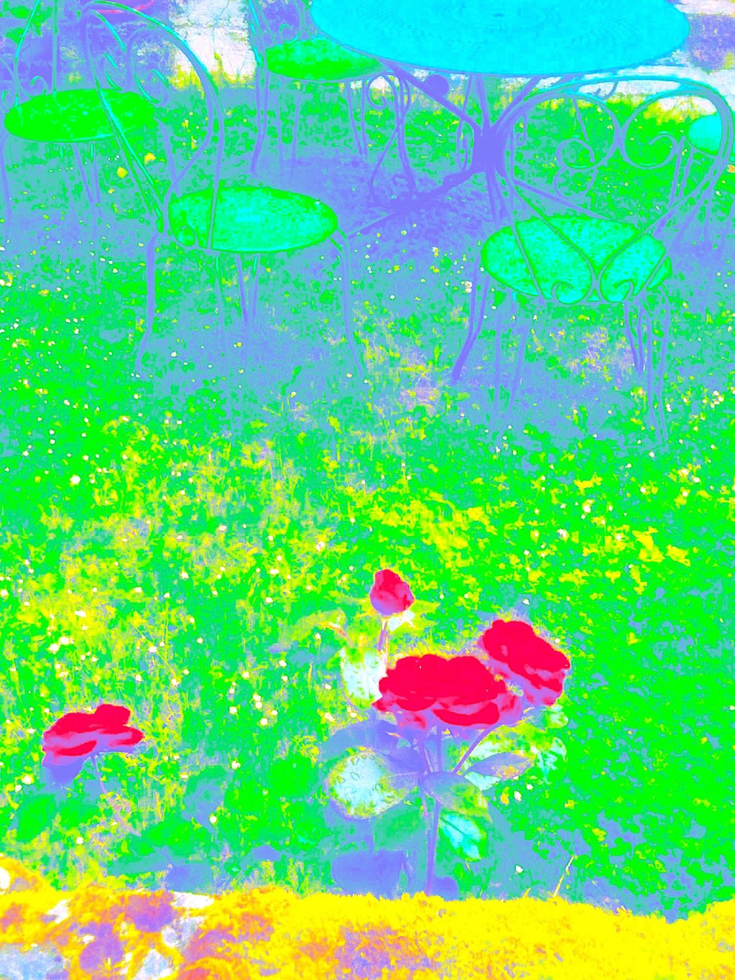 Kirlian - Roses9