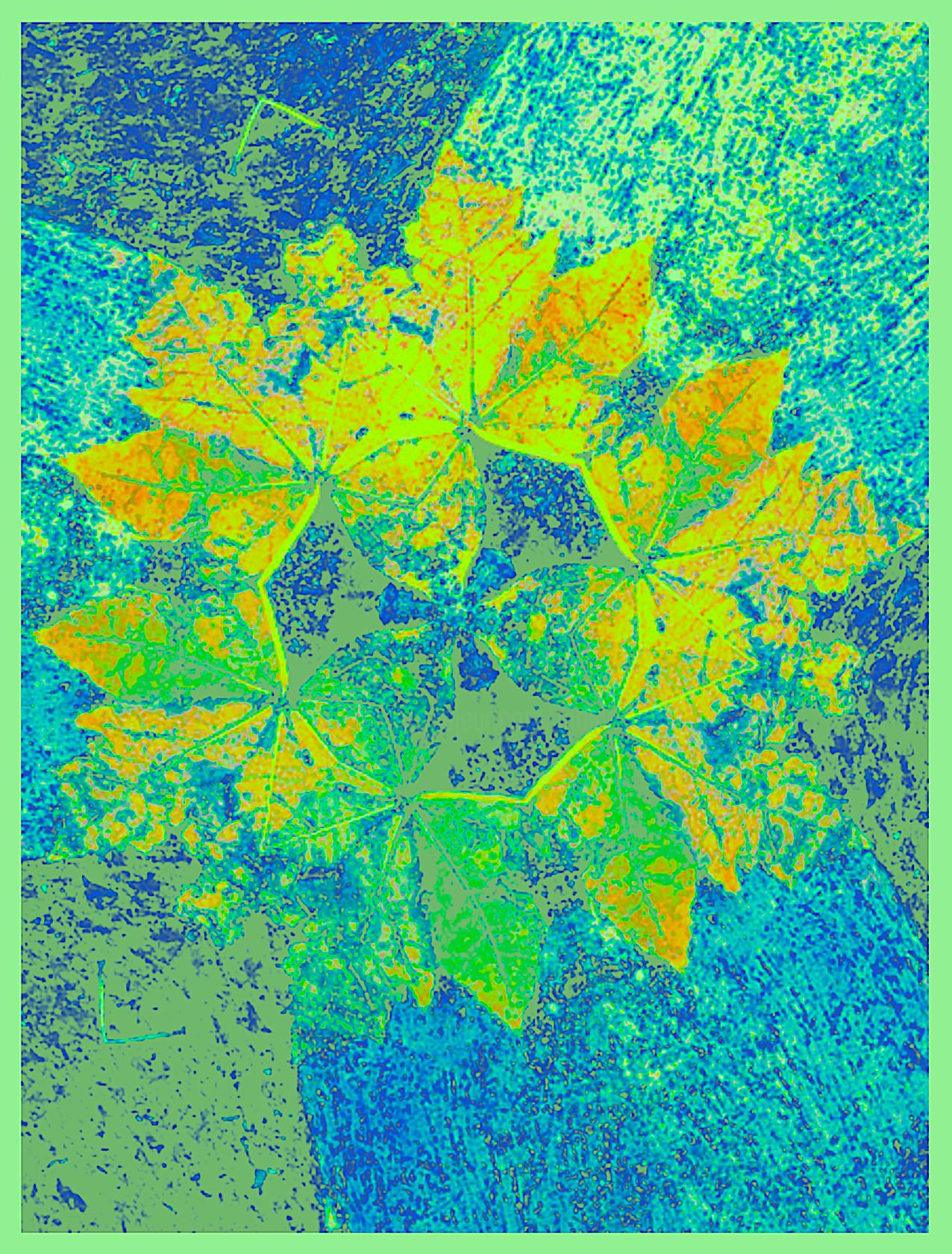 Kirlian - Feuille Turquoise