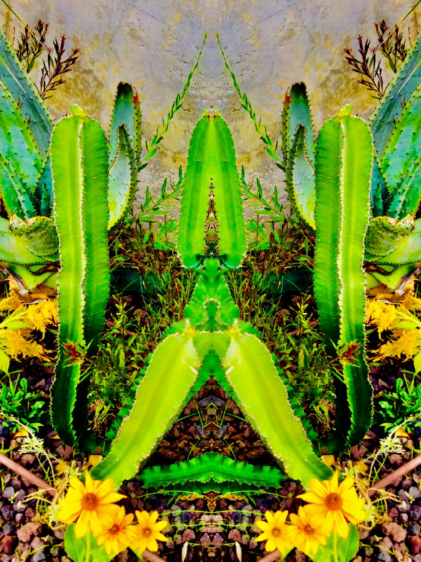 Kirlian - Arizona Dream