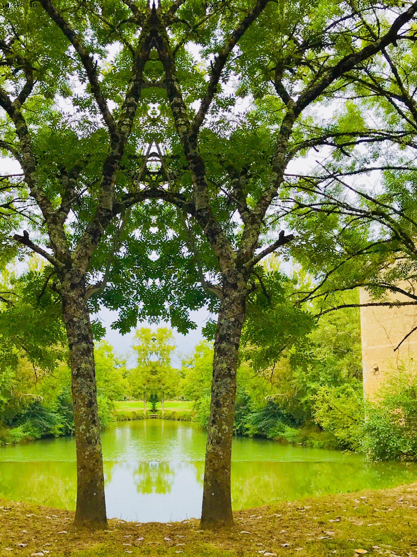 Kirlian - L'Appel de la Forêt