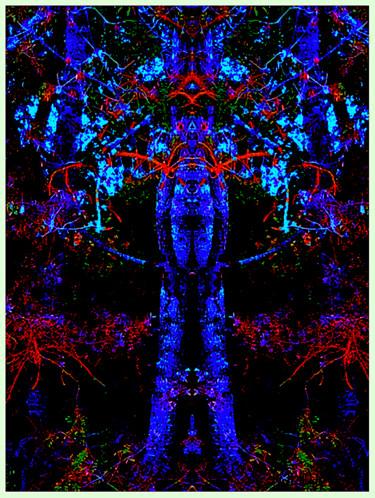 Tree Man 2