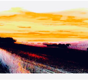 Landscape Surprize..
